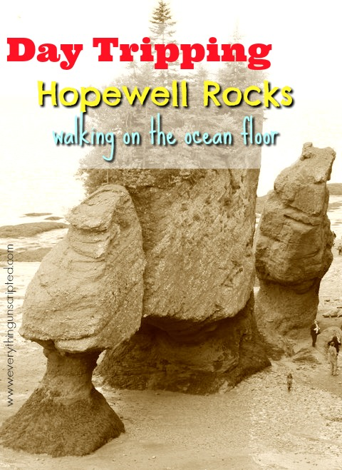 Day Tripping – Hopewell Rocks