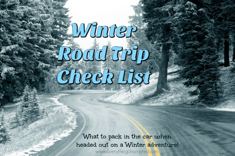 Winter Road Trip Check List