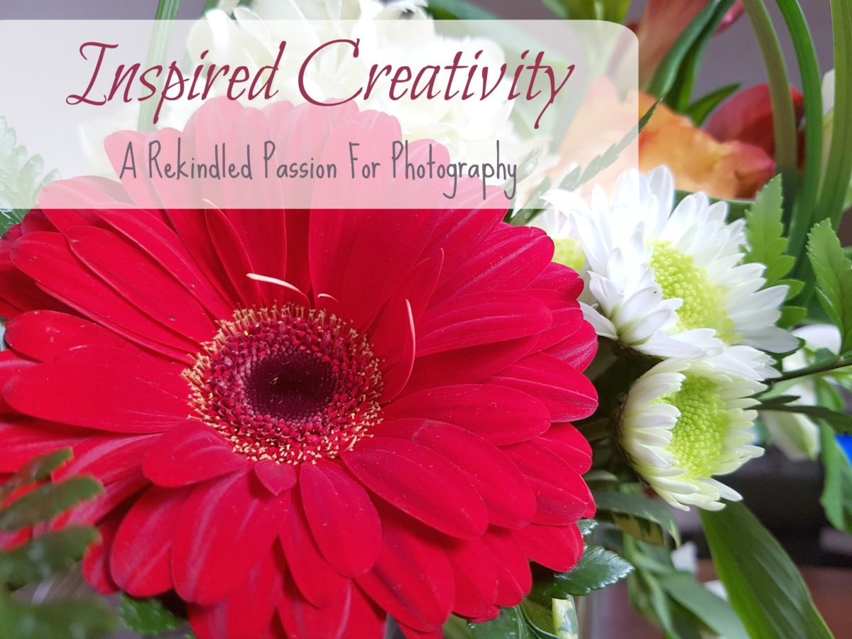 Inspired Creativity – A Rekindled Passion For Photography
