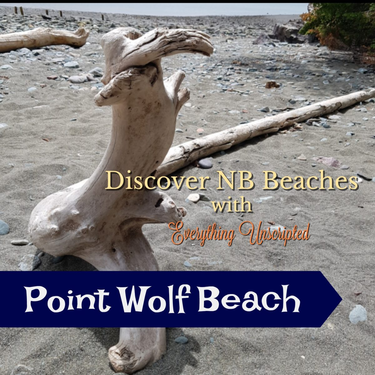 Discover NB Beaches – Point Wolf Beach