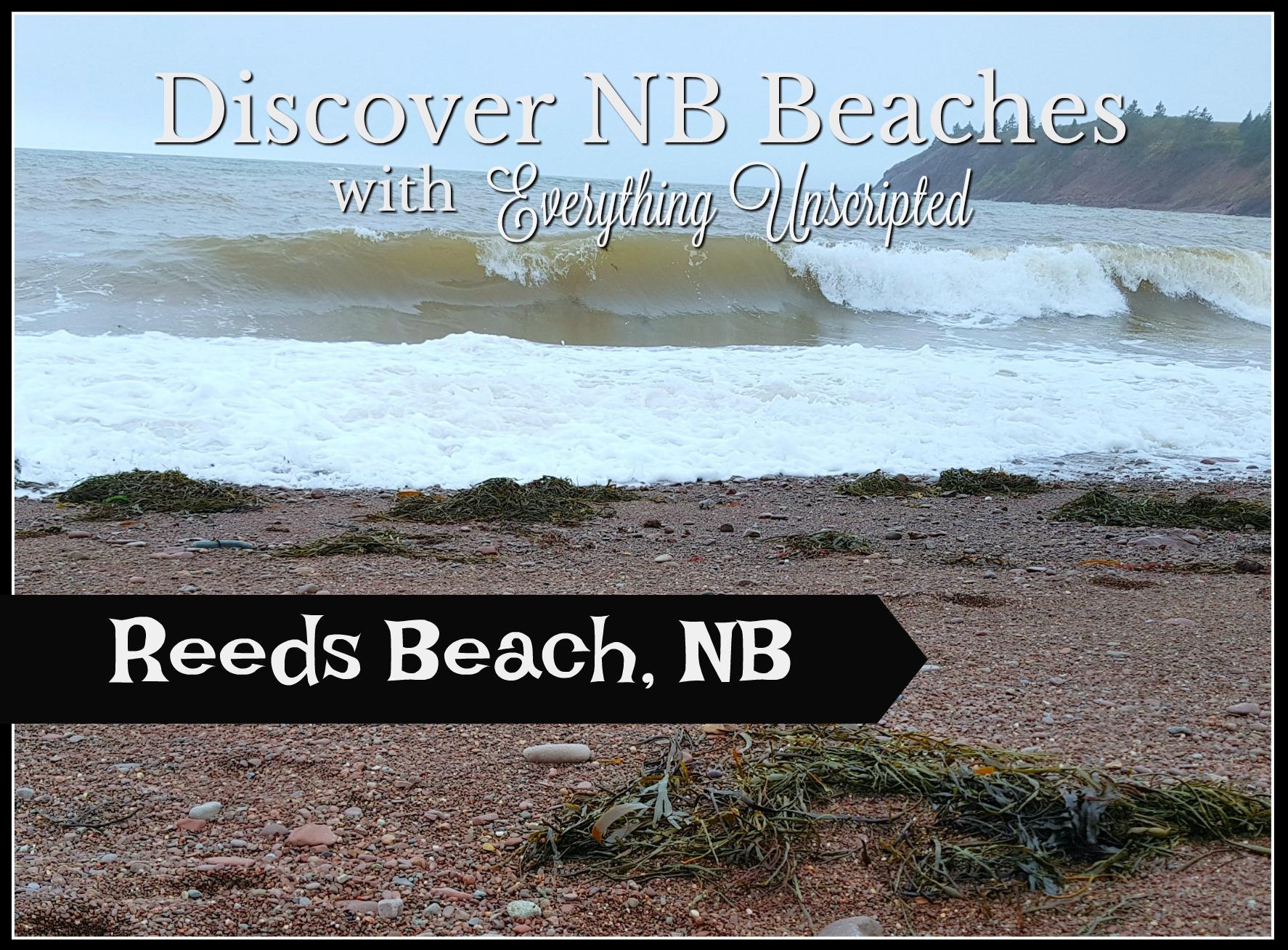 Reeds Beach